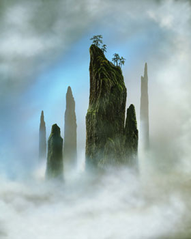 tree-top-2002