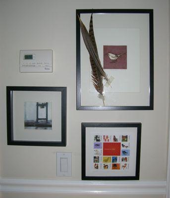 kara-feather