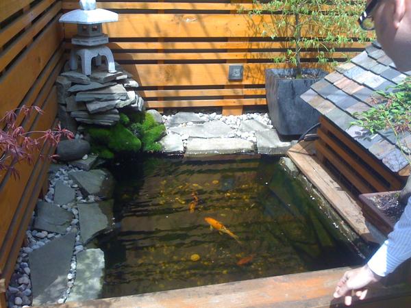 Japanese koi pond gardens memes for Japanese pond design ideas