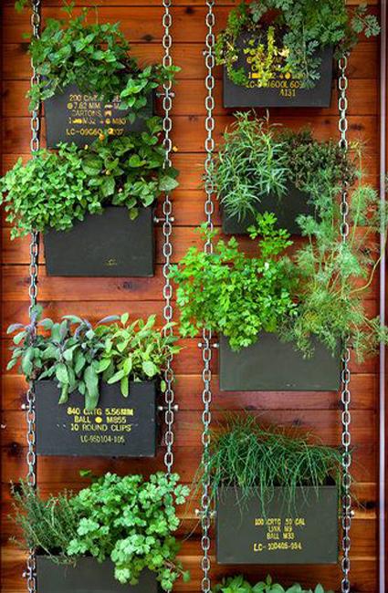 Ammo can herb garden ryan benoit