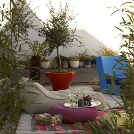 modern-patio-plants