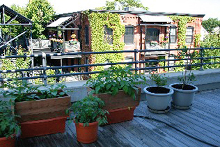 sharon-kitchens-pots-on-deck