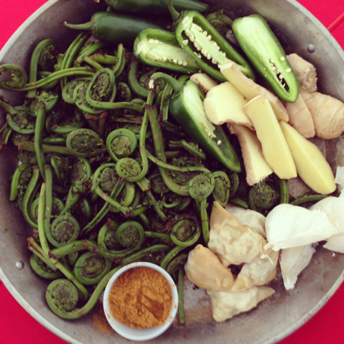 kennebunkport-food-festival-fiddleheads