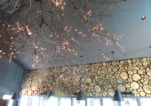 earth-restaurant-chandelier