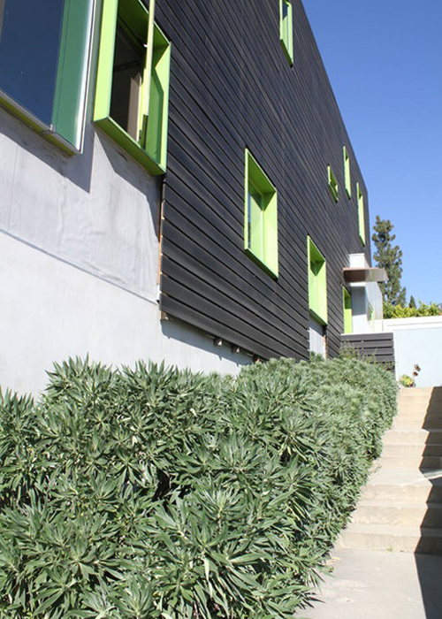 green-windows-black-exterior