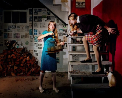 holly-andres-the-missing-bird