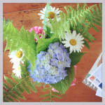 Sunday Bouquet: Cape Flowers At Judy's