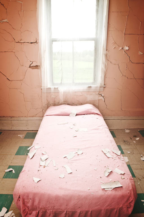shaun-lowe-the-pink-bed