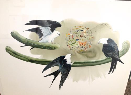 smfa-sale-birds