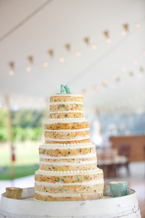 tent-wedding-naked-funfetti-cake-lens-cap-productions