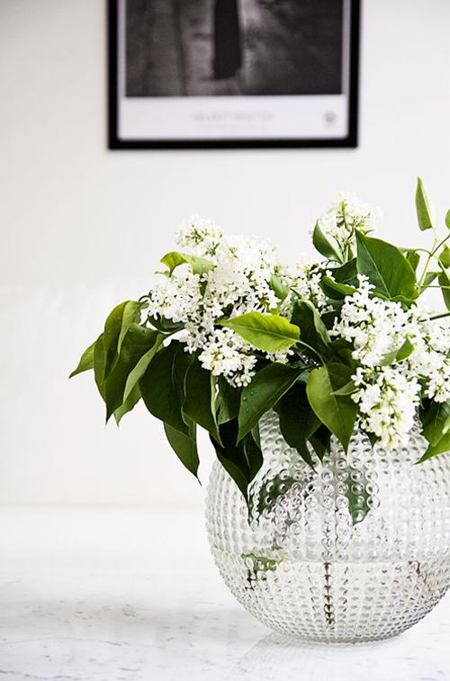 white-lilacs-in-glass-bubble-vase