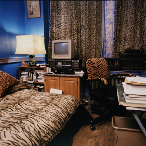 Stefanie Klavens Interior Photographs Animal Print Bed