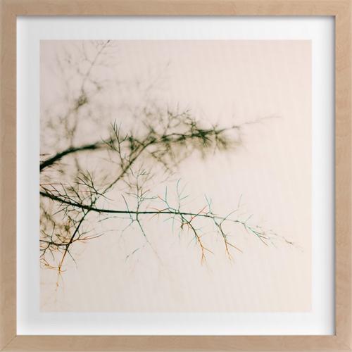 wild-fennel-study-no2
