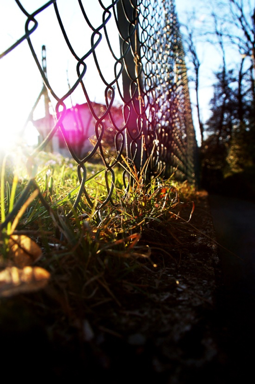 Edgy Spring Landscape Photograph With Pink Glimmer