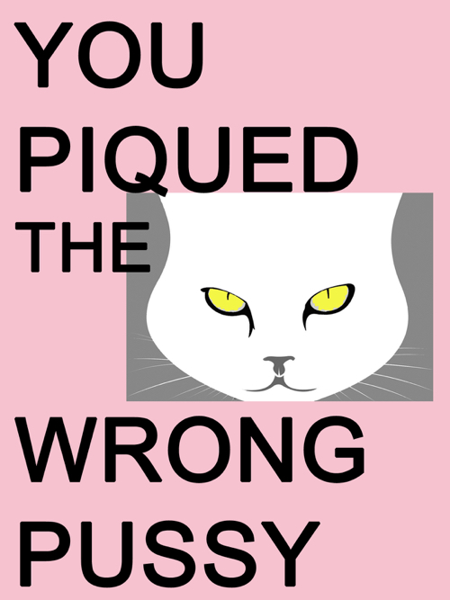 You Piqued The Wrong Pussy Women's March Poster
