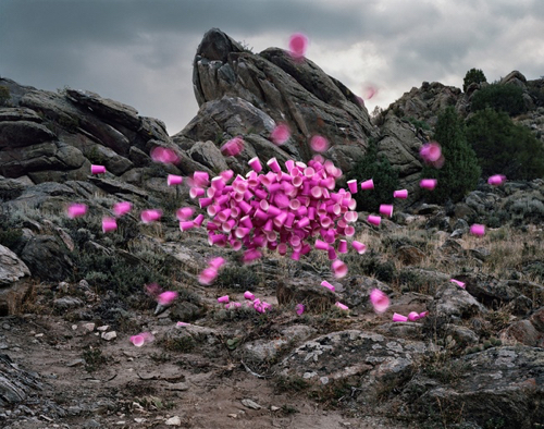 Landscape Photo With Pink Cups at MassArt Auction